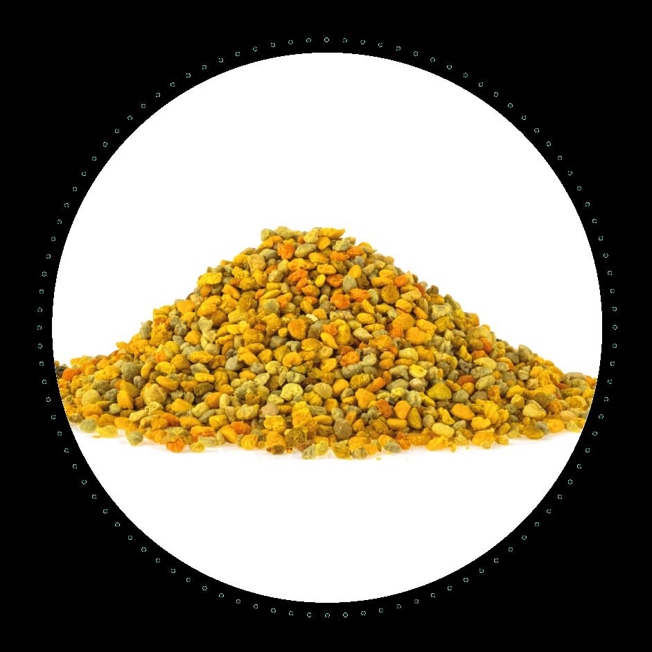 لقاح النحل الطبيعية 250 غرام